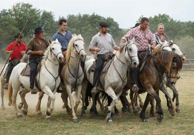 Photo de manadier de la mande cayzac à cheval